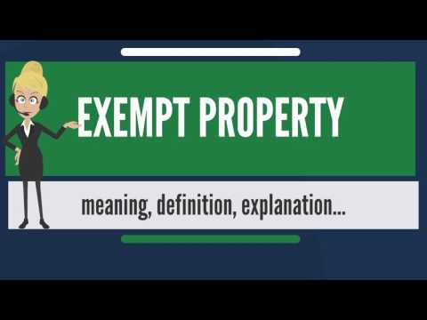 What is EXEMPT PROPERTY? What does EXEMPT PROPERTY mean? EXEMPT PROPERTY meaning & explanation