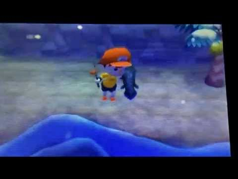 How to Catch the Rarest fish in Animal Crossing: New Leaf!!!