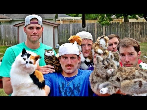 Trick Shots and Cats