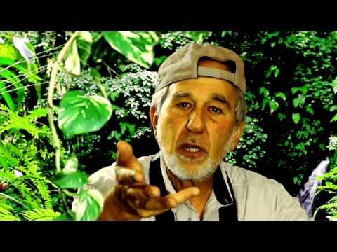 Evolution on the Horizon with Bruce Lipton