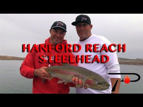 Washington's Hanford Reach Steelhead Fishing