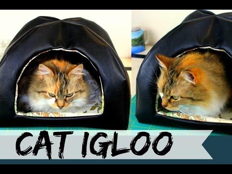 Cat Igloo