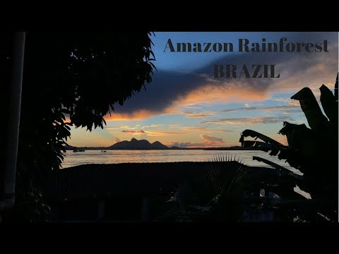 LIVING in the AMAZON RAINFOREST!! 11 day adventure in BRAZIL