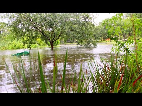 Aug  3, 2015 | Tampa, Florida |  Flooding