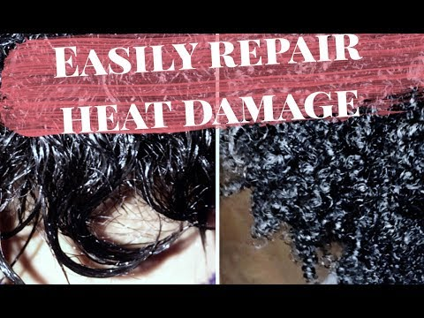 Hot to Fix Extremely Damaged Hair at Home