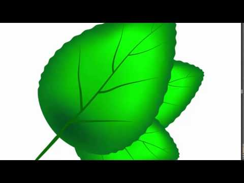 Green leaf - Adobe Illustrator cs6 tutorial. Quick and easy way how to draw green leaf