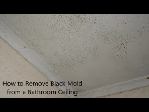 How to Remove Black Mold from a Bathroom Ceiling