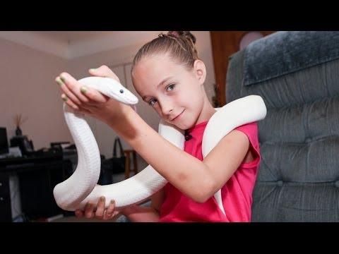 Xxx Mp4 9 Year Old Snake Handler Krista Guarino 3gp Sex