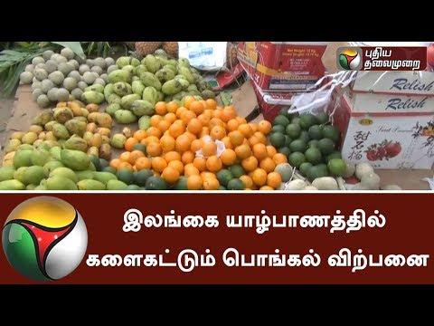 Brisk Sales for Pongal Festival in Sri Lanka: Details | #Pongal #Pongal2018 #Srilanka