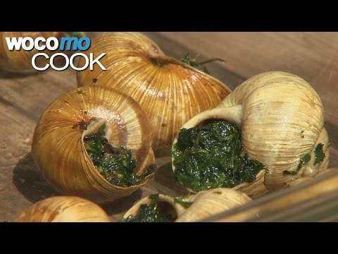Snails | Gathering and Cooking the French Delicacy