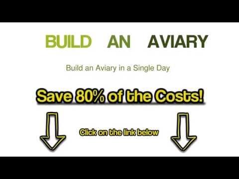How To Build An Outdoor Bird Aviary