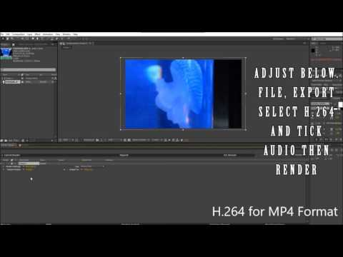 After Effects CS6 Video Trimming