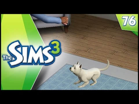 Sims 3 - Ep 76 - OUR NEW DOG!