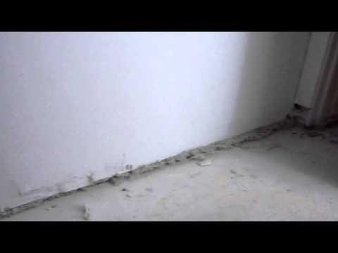 Wall built over carpet