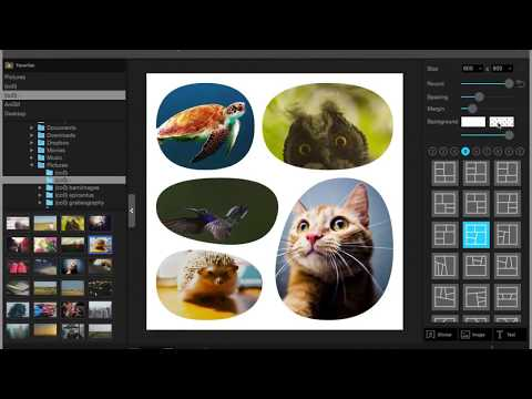 Collage - PhotoScape X for Mac 2.3