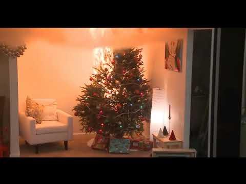 Custome Christmas tree Joke