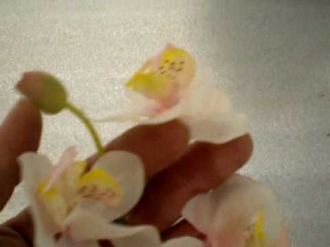 Artificial flower phalaenopsis orchid