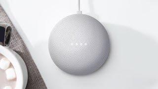 Google Home | Winter Sports