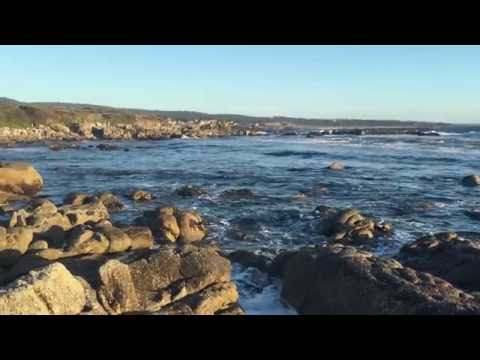 Trip to Monterey, Carmel, 17 Miles Drive, Bixby Bridge, Interstate 1 4K