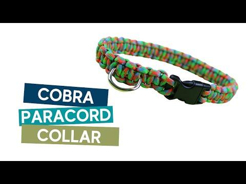 HOW TO MAKE A COBRA (SOLOMON BAR) PARACORD DOG COLLAR TUTORIAL