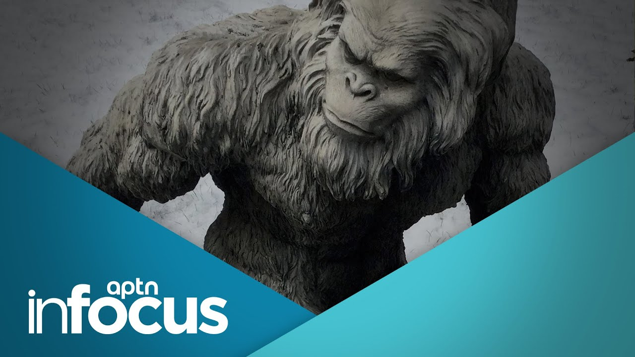 Tricksters, shapeshifters, star people and other Indigenous legends | APTN InFocus