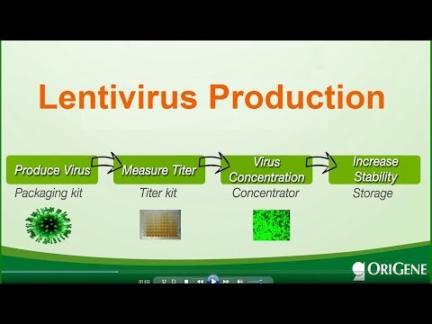 Lentivirus production - packaging, titer-measuring and stabilizing