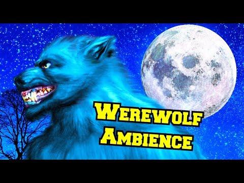 Werewolf Ambience Werewolf Walking In A Forest At Night