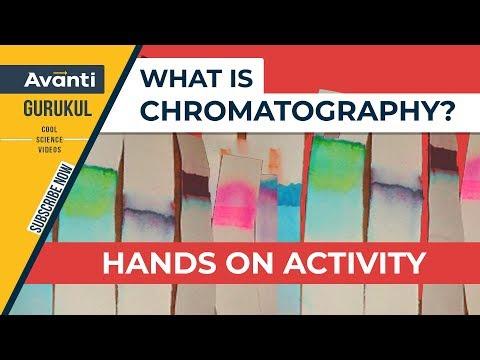 Class 9 Science - Chemistry - Chromatography - Activity