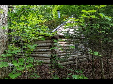 How to build a survival cabin on a shoestring budget -