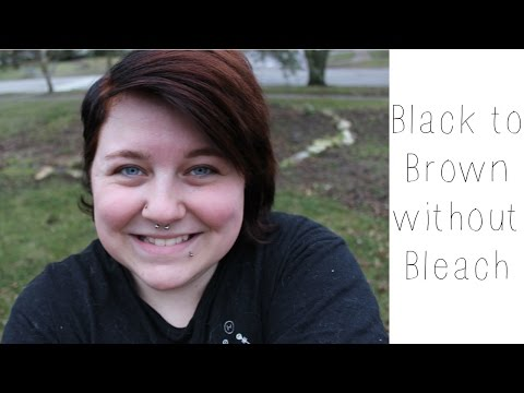 Black to Brown without Bleach!   Henna Hair Dye