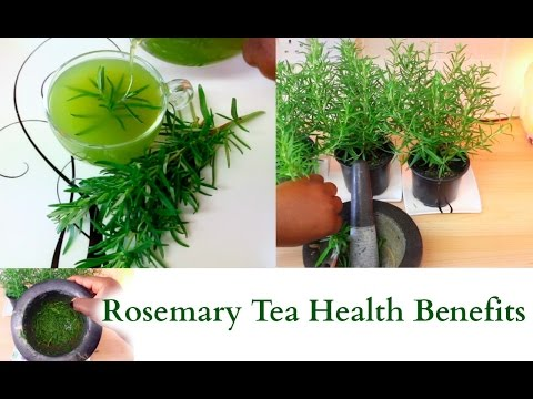 How To Make Rosemary Tea from Fresh Herbs Health Benefits Relaxing and Healing