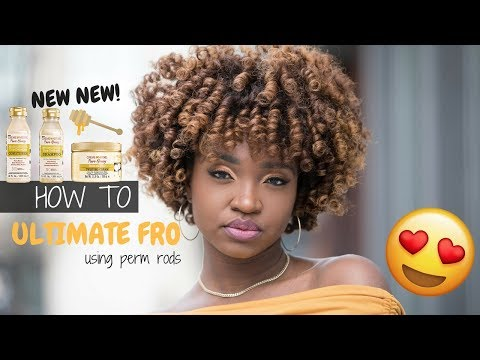 How To: Ultimate Fro | NEW Creme of Nature Pure Honey Collection