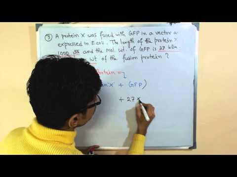 Molecular weight calculation | molecular weight formula
