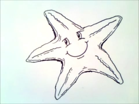 how to draw a starfish | how to draw a starfish step by step