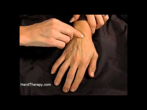How to palpate the carpal bones in the wrist