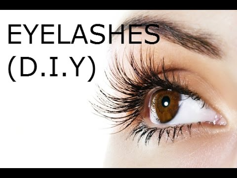 HOW TO GROW Long Eyelashes and Thick Eyebrows Fast! (DIY)