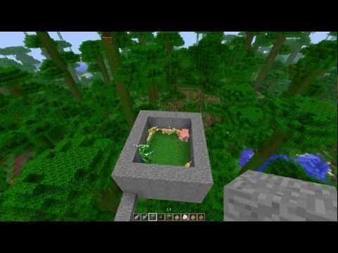 Minecraft: How to tame an Ocelot [New Jungle Mob]