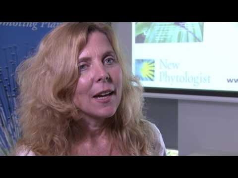Interview with Amy Austin, Environment section Editor
