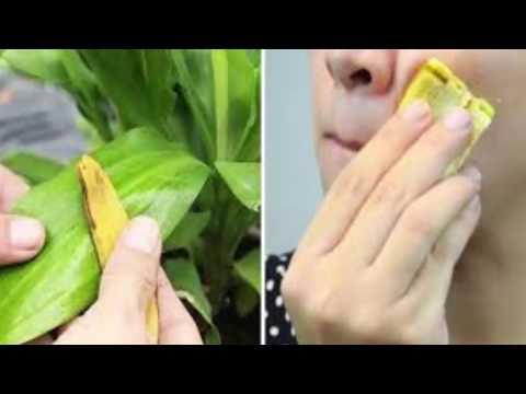Stop Throwing Away Banana Peels 10 Ways You Can Use Them!