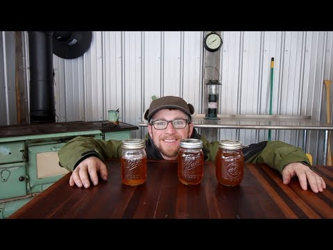 How Much Maple Syrup Can we Get from 10 Gallons Of Sap