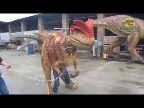 Halloween realistic dinosaur costume suit for sale DWE3324-15