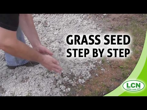 Planting And Growing Grass Seed - Step by Step