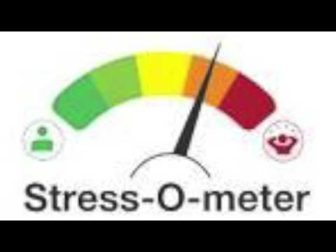Stress on College Students