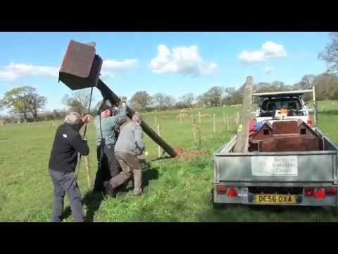 How to put up a barn owl box in a field: The experts.