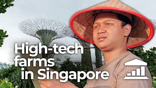Singapore: The Financial Center that wants to become an Agricultural Powerhouse? - VisualPolitik EN
