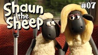 Shaun the Sheep - Two's Company S2E7 (DVDRip XvID)HD