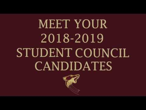 2018-2019 Student Council Elections