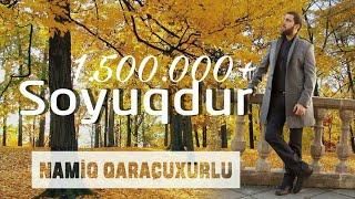 Namiq Qaraçuxurlu - Soyuqdur