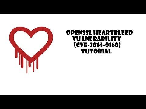 OpenSSL Heartbeat (Heartbleed) Vulnerability Tutorial (CVE-2014-0160)