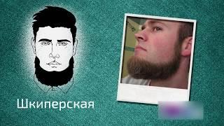 Download Какие стрижки бород сейчас в тренде? Какая борода подойдет вашему типу лица? Video